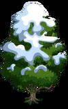 Singapore Jackfruit Tree7-icon