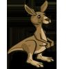 Kangaroo-icon