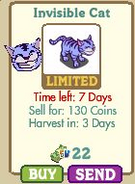 Invisible Cat Market-info