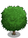 Lychee1-icon