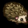 Hedgehog-icon.png