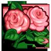 English Rose-icon