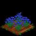 Cornflower 100