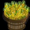 Yellow Lupin Bushel-icon