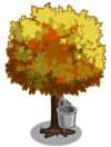 Yellow Maple1-icon