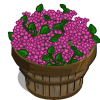 Lilac Bushel-icon