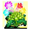 Roman Candle Cauliflower-icon