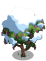 Amherstia Tree8-icon.png