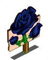 Black Rose Mastery Sign-icon