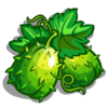 Chayote-icon