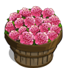 Ballet Queen Flower Bushel-icon