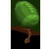 Football Tree-icon