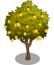 Lemon2-icon