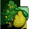 Jackfruit Tree-icon