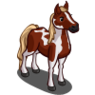 Paint Horse-icon