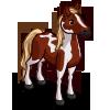 Paint Horse-icon