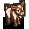 Australian Mini Goat-icon.png
