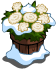Snow Carnation Pot-icon