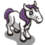 Purple Pony Foal-icon