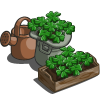 Potted Clovers-icon