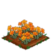 Golden Poppy 100.png