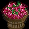Allspice Pepper Bushel-icon