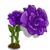 Purple Carnation-icon