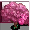 Pink Tulip Tree-icon