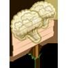 Cauliflower Mastery Sign-icon