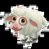 Baby Katahdin Sheep