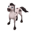 Baby Spotted Appaloosa