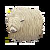 Lincoln Sheep