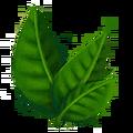 Black Tea Leaf.png