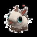 Baby Sealpoint Dwarf Rabbit.png