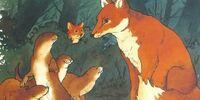 Lean Fox