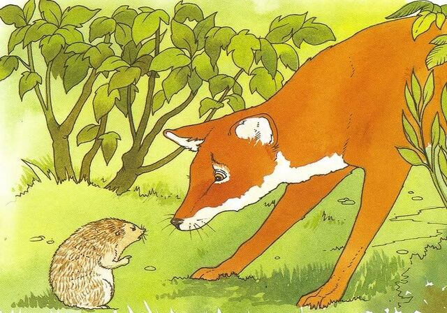 File:Stout Fox and Sage Hedgehog.JPG