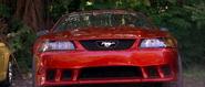 Saleen Mustang - Front View