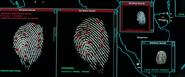 Braga - Fingerprint Match
