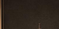 Artoria Pendragon (Rider Alter)