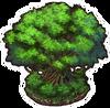 PrimevalForest