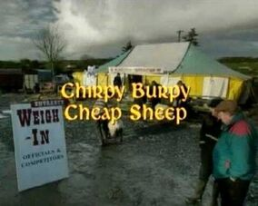 Chirpy Burpy Cheap Sheep