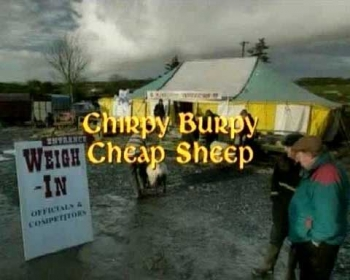 File:Chirpy Burpy Cheap Sheep.jpg