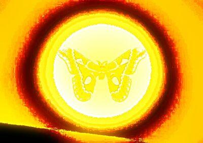 Sunshade Moth