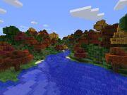 Autum Woods