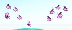 File:Butterfly swarms.jpg
