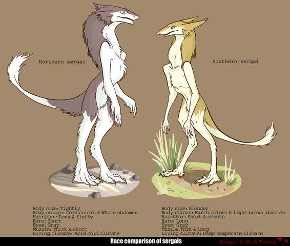 File:Sergal Comparison.jpg