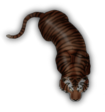 File:Tigertoken.png