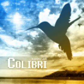 File:Colibri.jpg