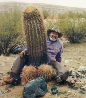 Funny-cactus-man-ZETVJZITVR