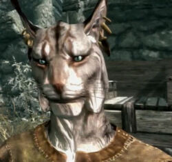 Ruddager the Khajiit